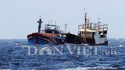 Đà Nẵng lập bản đồ mật danh toạ độ tàu cá trước lệnh cấm của TQ