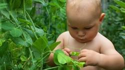 """Đỏ chín mặt với các """"nông dân"""" Ngày khỏa thân làm vườn thế giới"""