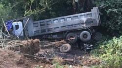 Tai nạn hy hữu ở Lạng Sơn: Xe tải đâm chết 9 con trâu rồi lao vực