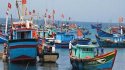 Bộ NNPTNT hướng dẫn về việc Trung Quốc cấm đánh cá trên Biển Đông