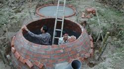Vụ 3 anh em ruột bị chết dưới hầm biogas: Cục Chăn nuôi lý giải gì?