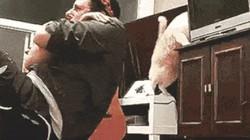 Ảnh động: Loài mèo sẽ đánh bật con người ra khỏi trái đất?