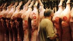 Các ông lớn ngành chăn nuôi Trung Quốc vất vả vì giá thịt lợn giảm