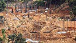 Rà soát lại toàn bộ bán đảo Sơn Trà trước khi thực hiện dự án