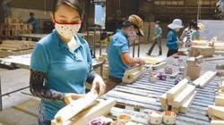 Vì sao xuất khẩu gỗ trắc, cẩm lai, gỗ hương phải có giấy phép của Cites?