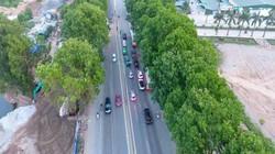 Clip: Tiếc hùi hụi nghìn cây xanh lâu năm trước nguy cơ bị chặt hạ