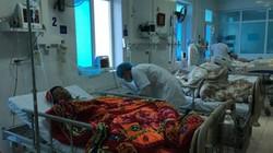 5 năm có hàng chục nghìn người nhập viện vì ngộ độc thực phẩm