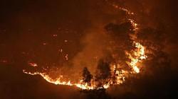 Hiện trường vụ cháy rừng lớn nhất lịch sử ở Sóc Sơn