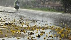 Hot: Cảnh báo ngập lụt tại Hà Nội, miền Bắc có mưa rào diện rộng