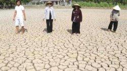 """""""Một hộ triệt đường nước, cả xóm bỏ ruộng hoang"""": Đề nghị hủy án"""