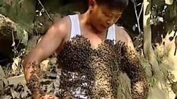 Độc đáo người đàn ông có thể thuần phục các loại ong rừng