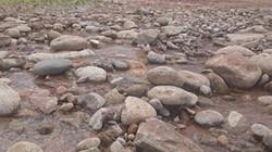 TT-Huế: Đập hồ chứa rò rỉ nước, dân sống trong lo lắng