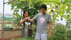 """""""Soái ca"""" Hà thành chiều vợ, phá mái tôn để trồng rau, nuôi gà"""