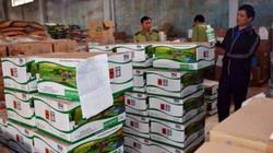 Phục hồi điều tra vụ án xảy ra tại Công ty phân bón Thuận Phong