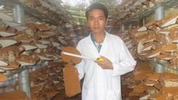 Vừa 30 tuổi đã làm chủ DN lớn, nuôi mộng xuất khẩu nấm