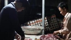 """""""Hô biến"""" hàng trăm kg thịt lợn nái đã bốc mùi thành lợn rừng"""