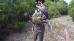 """Video: Mạo hiểm mò xuống hố sâu, bắt """"quái vật"""" khổng lồ"""