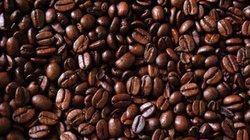 Giá nông sản hôm nay 30.6: Giá tiêu giảm, cà phê sắp có điều chỉnh lớn?