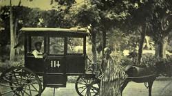 Xe thổ mộ, phương tiện giao thông vang bóng Sài Gòn xưa