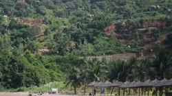 Đà Nẵng có một số vấn đề nóng 'không có lối ra'