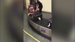 Video nhân viên sân bay Nhật Bản lau từng vali cho khách gây sốt