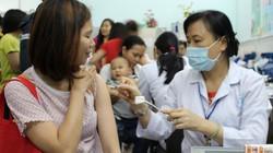 Hết vắc xin ngừa dại, người bị chó mèo cắn phải làm gì?