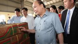 CLIP: Thủ tướng đi thăm, đối thoại, tháo gỡ khó khăn cho nông dân
