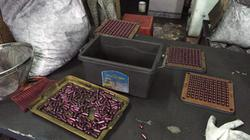 """Hải Phòng: Cơ sở sản xuất """"thuốc"""" hỗ trợ ung thư từ than tre được triệt phá như thế nào?"""