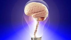 Muốn biết IQ của mình nằm trong khoảng nào, hãy giải ngay bộ 6 câu hỏi sau