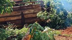 Lật xe chở gỗ lúc rạng sáng, 1 người chết, 2 người bị thương