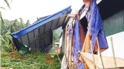 Điên Biên: Một cơn lốc làm 63 ngôi nhà hư hỏng, thiệt hại 1 tỷ đồng