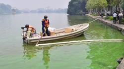 Nước Hồ Gươm đổi màu do tảo độc