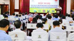 Bộ NNPTNT chỉ đạo trồng lúa siêu ngắn ngày ở miền Trung, Tây Nguyên