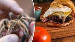 Món hambuger nhện độc không dành cho những người yếu tim