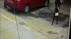 Chó từ trên trời rơi xuống trúng đầu người phụ nữ