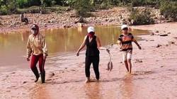Mỏ vàng Bồng Miêu:Công ty 6666 bất chấp lệnh cấm, sai phạm hàng loạt