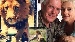 Sư tử tấn công chủ vườn thú, ngoạm cổ lôi vào bụi rậm