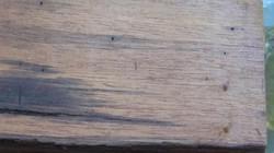 Chồng 81 tuổi thú nhận dùng khúc ván gỗ giết vợ