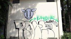Graffiti xuất hiện khắp nơi ở TPHCM: Vẽ cho đẹp hay bôi bẩn thành phố?