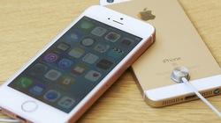 Tổng hợp các thông tin về iPhone SE 2 cho đến nay