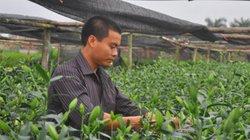 Hà Nội: Nhiều nơi lúng túng vì chưa có tiêu chí NTM kiểu mẫu