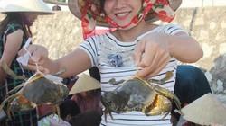 Dong thuyền săn cua tự nhiên trên sông Cửa Sót, thu tiền triệu/ngày