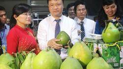 Sắp xây chợ đầu mối nông sản quốc tế lớn nhất Đồng Nai