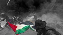 Thế giới tuần qua: Sâm banh ở Jerusalem, máu ở Gaza