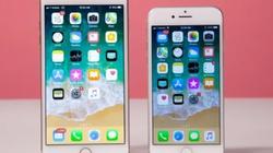 """iPhone 8/ iPhone 8 Plus giảm giá """"sốc"""" 2 triệu đồng"""