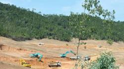 Cơ quan chức năng Nghệ An nói về việc Cty Trung Đô san bằng 32ha rừng