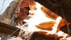 Đặc sản tép dầu khô đặc trưng của người Thái ở hồ thủy điện Sơn La