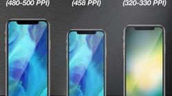 Rò rỉ hình ảnh iPhone màn hình 6,1 inch mới, giá rẻ hơn