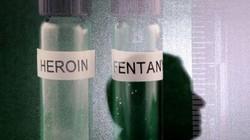 Mỹ: Phát hiện lượng chất tổng hợp đủ để giết 26 triệu người!