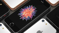 Không cần tai thỏ, iPhone SE 2 nắp lưng kính vẫn đẹp xiêu lòng